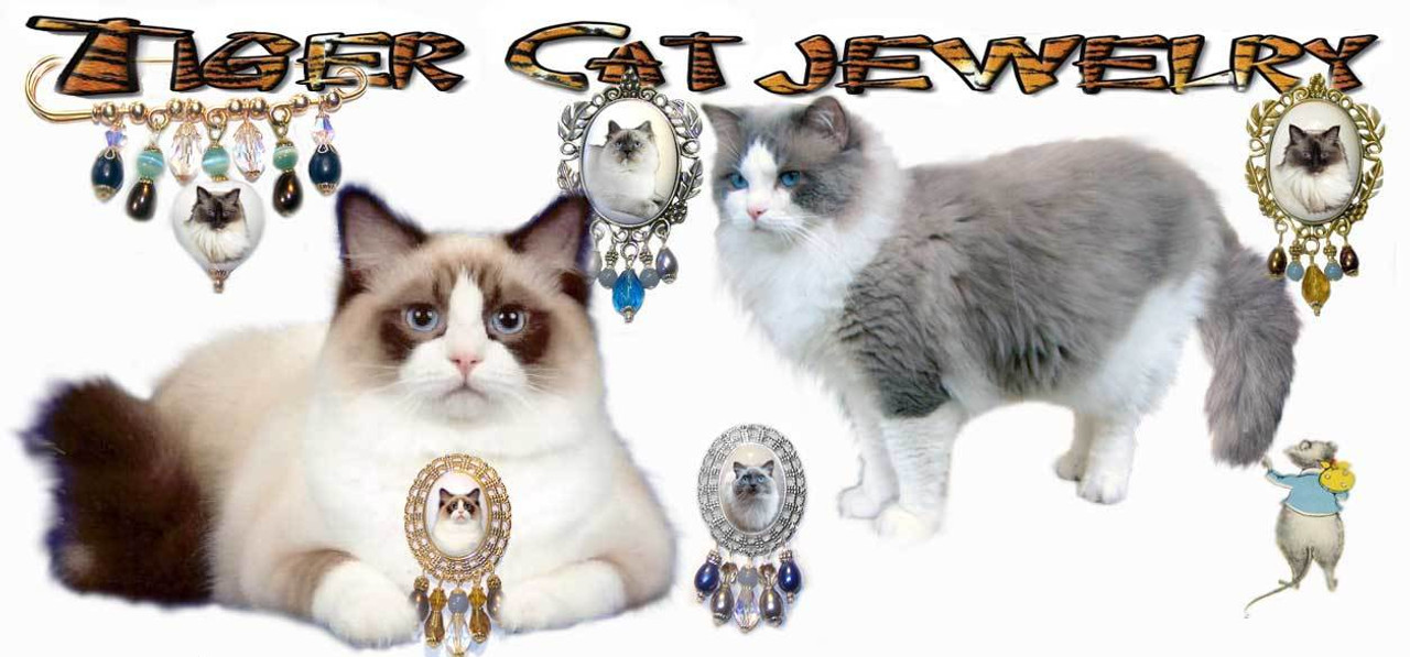 Ragdoll Cat Brooch