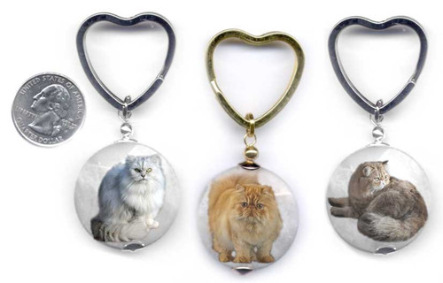 Persian Cat Photo key ring.