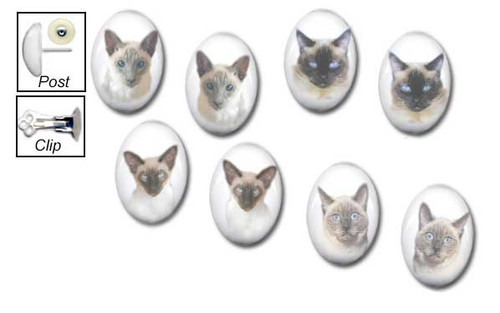Seal Point  and Blue Point Siamese Stud earrings