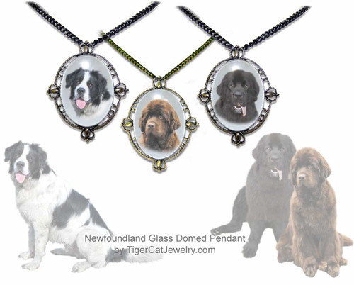Newfoundland Dog three dimensional regal glass and metal pendant necklace available in gold or silver with your choice of  Black, Chocolate Brown or Landseer Newfie photo.