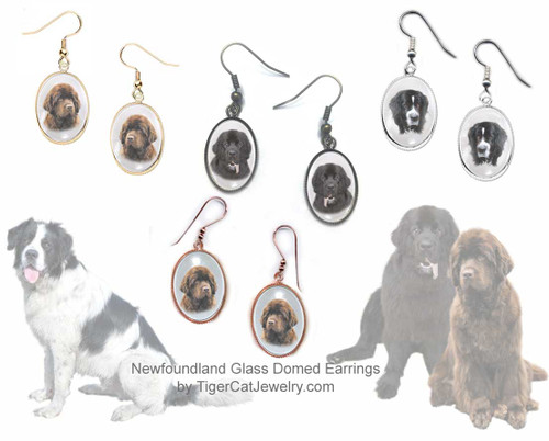 $16.99 Newfie photo earrings feature pictures of a Black, Chocolate Brown or Landseer Newfoundland dog, glass domed cabochon earrings. 3photos, 4 colors. Pierced or non-pierced#NewfoundlandDog#NewfoundlandJewelry#NewfoundlandEarrings#NewfoundlandEarrings#NewfieEarrings