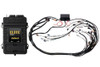 Haltech Elite 2500 +  NON DBW Terminated Harness Kit | Bosch EV6