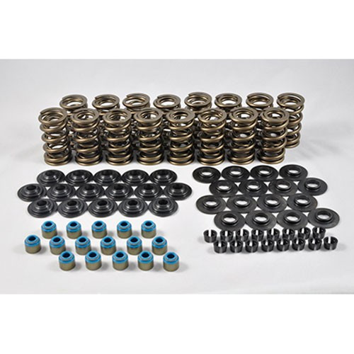 "PAC Racing .660"" Platinum Dual Valve Spring Kit"