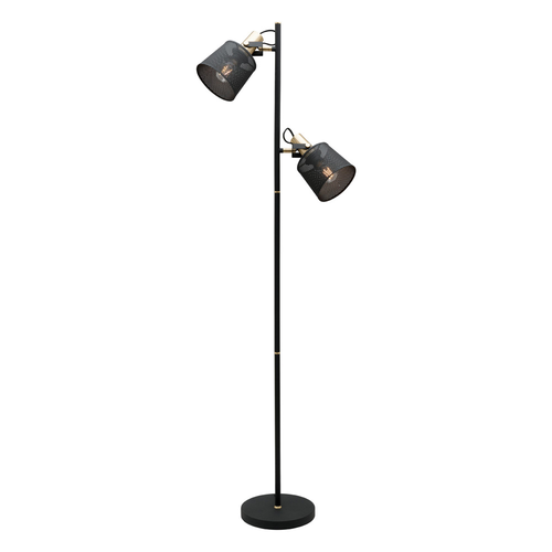 Arizona 2 Light Mesh Floor Lamp