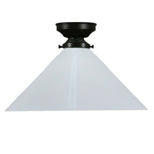 Industrial Black White Close to Ceiling Light