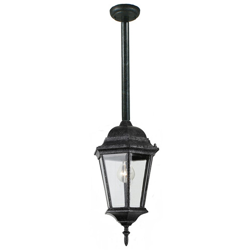 Junction Exterior Antique Black Rod Pendant Light
