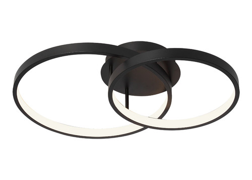 Zaida 2 Light Black Ring Ceiling Light