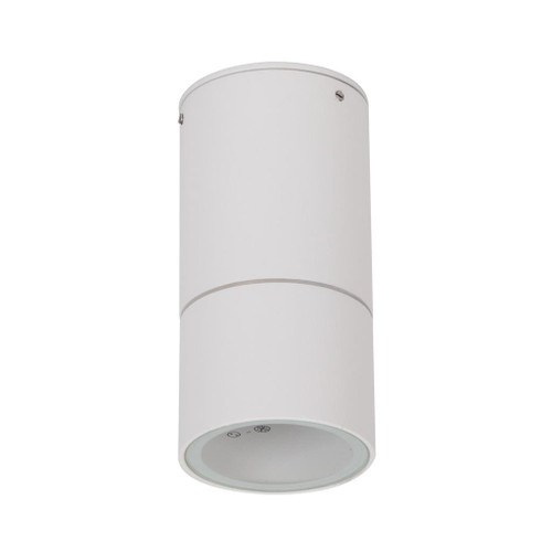 Elite Surface Mounted Interior/Exterior LED Downlight - White