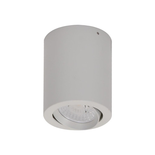 Neo 10W Surface Mounted Tiltable Downlight - White