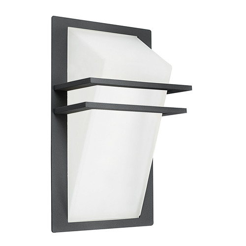 Park Anthracite Outdoor Wall Light