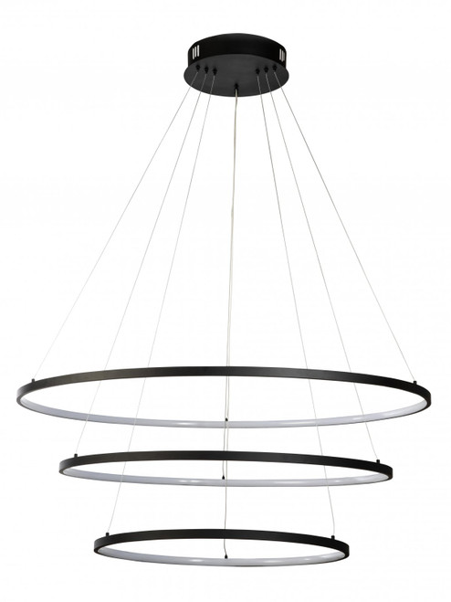 Modern Black Slim Rings LED Pendant Light 80cm +100cm