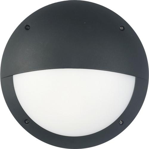 Lily Black 12W LED Eye Exterior Wall Light