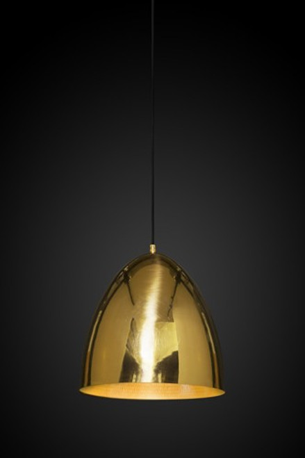 Egg Brass Pendant Light with a black background