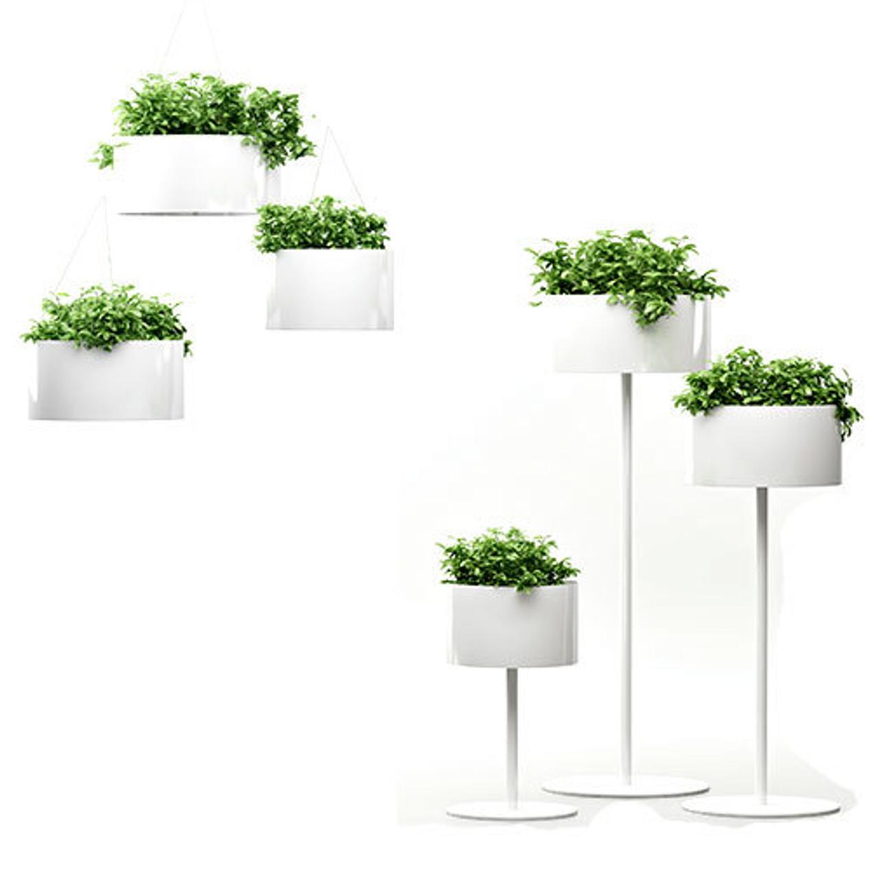 Magnuson Green Cloud Planters