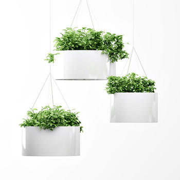 Magnuson Green Cloud Hanging Planters