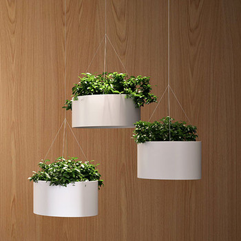 Magnuson Green Cloud Hanging Planters - Wood Backdrop