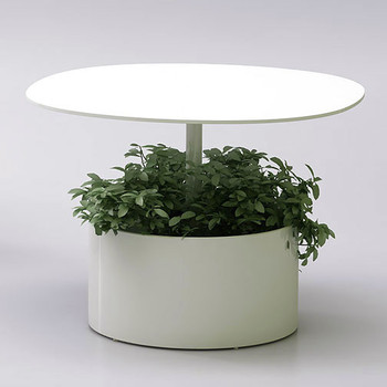 Magnuson Laura Planter Table with Plant