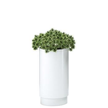 Magnuson Cirkel Planter in White