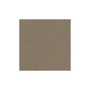 Cramer Vinyl Grade 5 - Mayer Palermo Clove 5PC