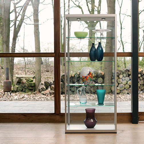 Magnuson Pictor Display Case in Use - Winter Day