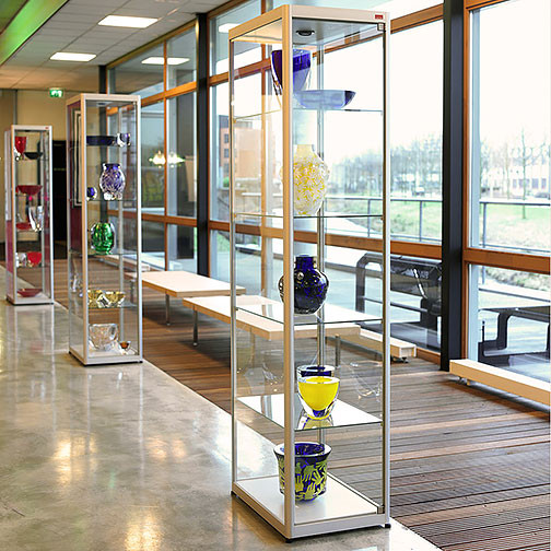 Magnuson Pictor Display Cases without Locking Storage Base - In Line