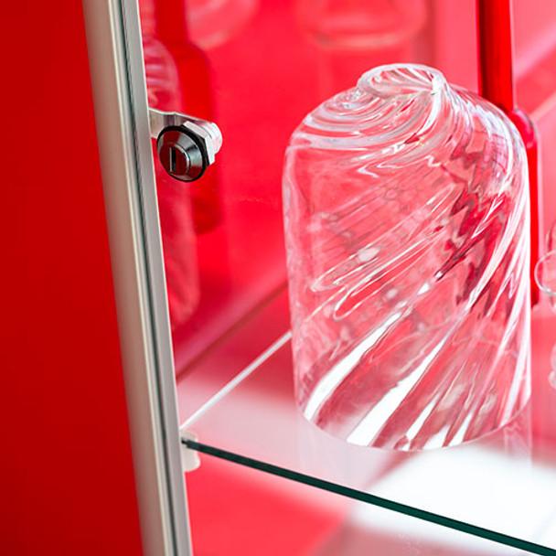 Magnuson Pictor Display Case Lock Detail