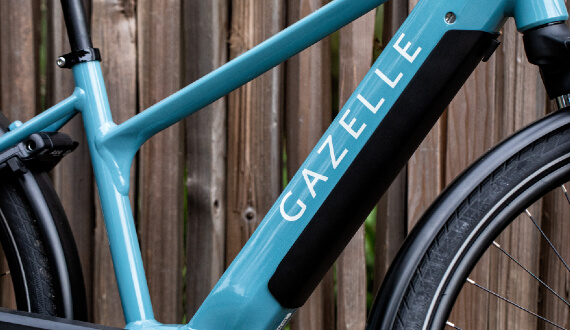 gazelle-medeo-t10-frame-close.jpg