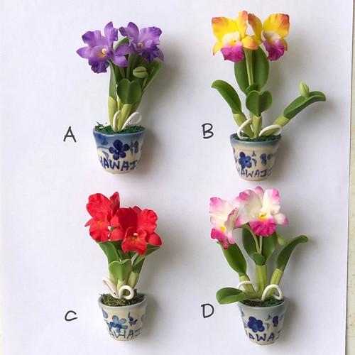 Cattleya Clay Orchid Magnet (Pot)