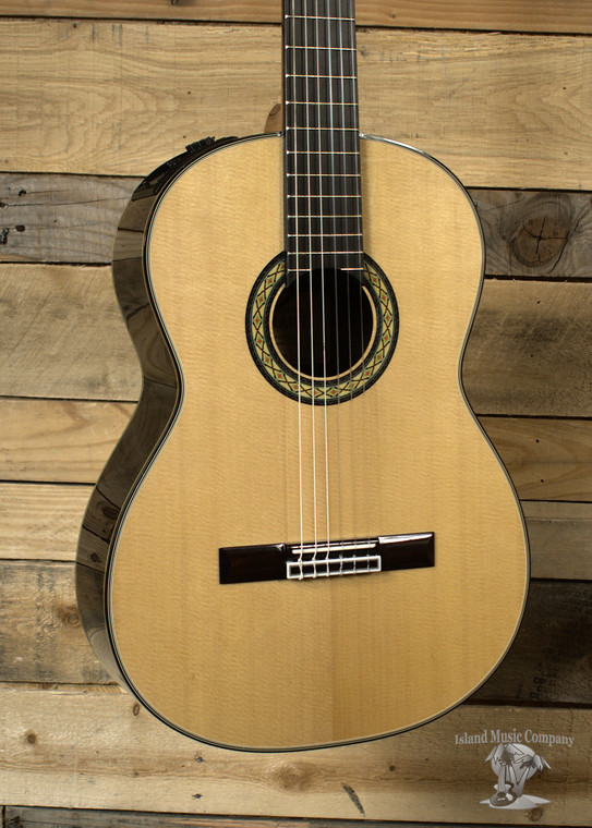 Takamine TH-8SS Acoustic/Electric Concert Classical Guitar Natural w/ Case