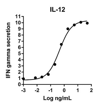 HZ-1256-1000 Proteintech Humankine???????????? Recombinant Human IL-12 Humankine Recombinant Human IL-12, 1000ug Each of  1