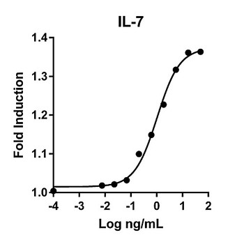 HZ-1281-1000 Proteintech Humankine???????????? Recombinant Human IL-7 Humankine Recombinant Human IL-7, 1000ug Each of  1