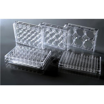 NEST Scientific USA 702001 TC-Treated Cell Culture Plates 24 Well Cell Culture Plate, Flat, TC, Sterile  (Case of 50)