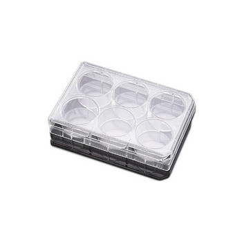 Corning 353503 Falcon 6 and 12 Well TC-Treated Polystyrene Permeable Support Companion Plates Falcon 12 Well TC-Treated Polystyrene Permeable Support Companion Plate, with Lid, Sterile  (Case of 50)
