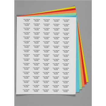 RNBW-3000 Diversified Biotech Laser Tough-Tags 1.28 x 0.50\ Rainbow 1.28 x 0.50\ Package of  2125