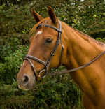 HDR Pro Monocrown Bridle with Flash and Rubber Reins