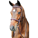 HDR Pro Fancy raised Comfort Corwn Padded Bridle
