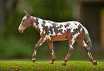 Breyer® Buckeye Dressage Mule