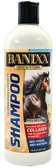 Banixx Shampoo
