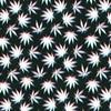 Fuzzy Marijuana