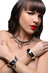 Chrome Slave Collar and Shackles Kit (AE375)