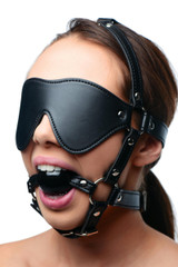 Blindfold Harness and Ball Gag (AE909)