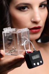The Key Holder Deluxe Clear Case with Lock (AG421)