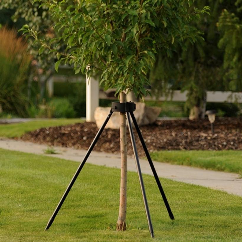 KRADL Tree Bracing System