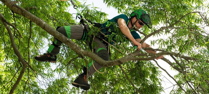 <span>TFTC #32</span> The Minimum for Safe Climbing