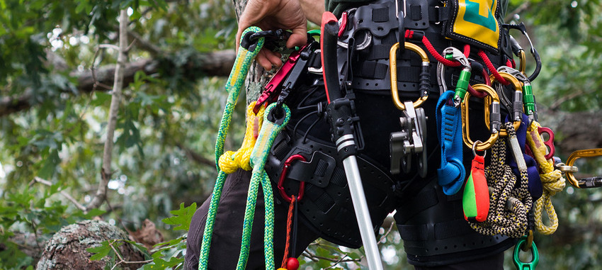 <span>TFTC #13</span> Maintaining Your Carabiners