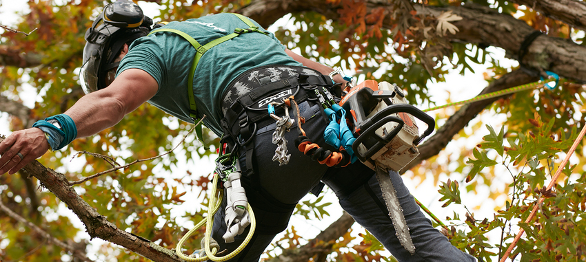 <span>TFTC#22</span> Ryan Torcicollo on Climbing