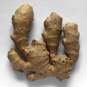 Ginger Root, powder 1/2 oz