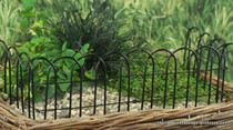 Black Scallop Fence