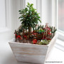 Wooden Planter Box - Square
