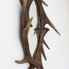 Image of Antler Mirror